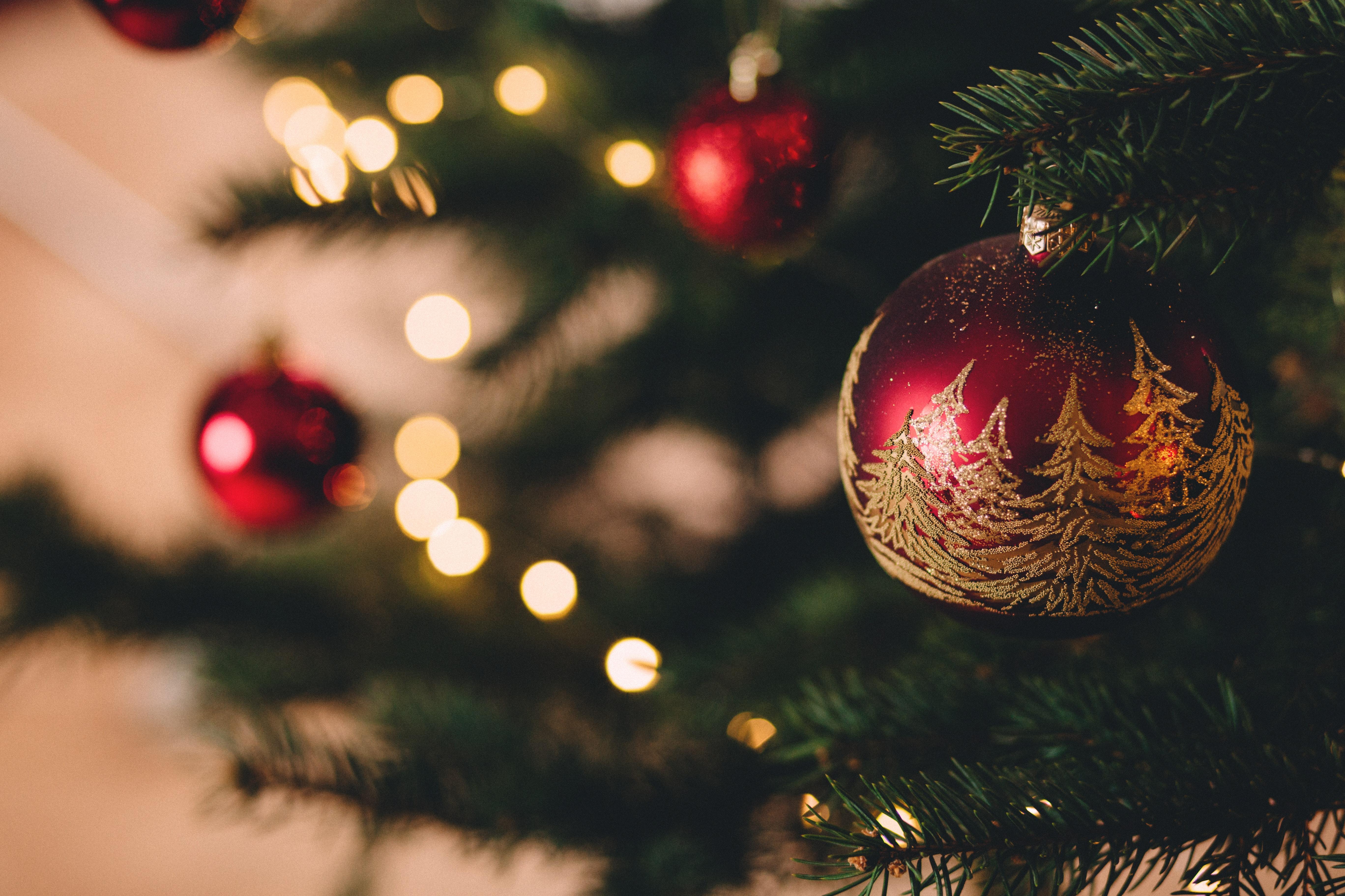 Välkommen att boka årets julbord!